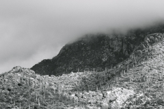 CLOUDS OVER VENTANA CANYON  #BW700